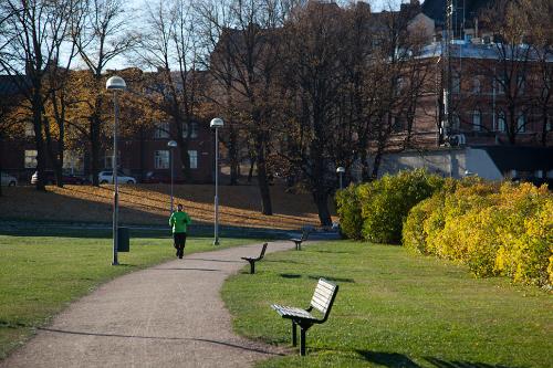 palvelut puisto